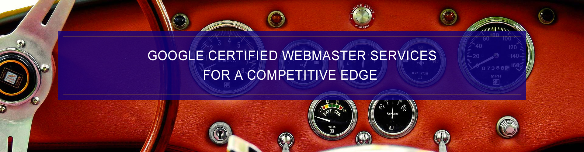 Dashboard Interactive - Google Certified Webmaster Services Competitive Edge